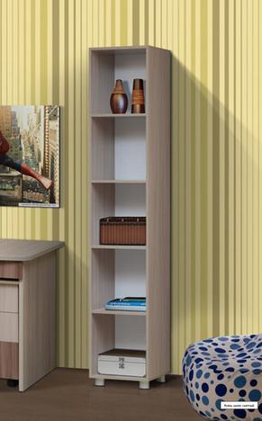 Шкаф-стеллаж ПМ 9 Юниор 6