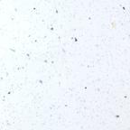 Столешница Ледяная искра белая 3000 х 600 х 38