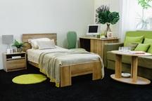 Кровать Шервуд Ш3а 900